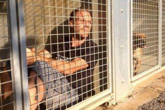 Humorista se muda para abrigo e salva 150 animais