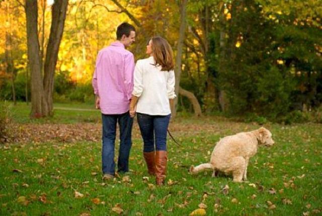 cachorro-fazendo-suas-nescessidades-durante-ensaio-com-casal-de-tutores