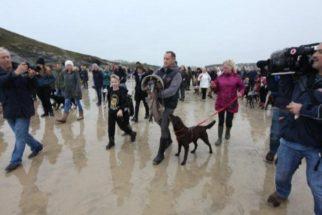 Emocionante: multidão se reúne em despedida de cachorro doente