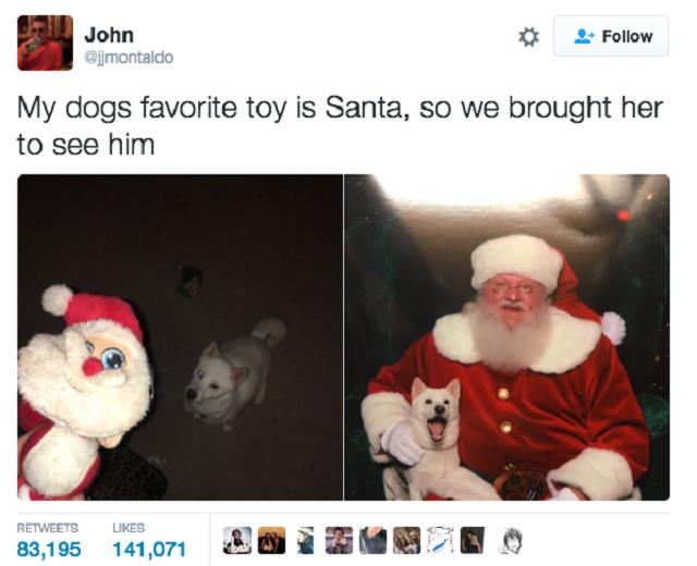 cadelinha-que-tem-como-brinquedo-preferido-um-papai-noel-de-pelucia-teve-a-oportunidade-de-conhecer-o-de-verdade