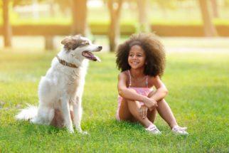 O cão precisa de um lugar para ficar afastado das crianças?
