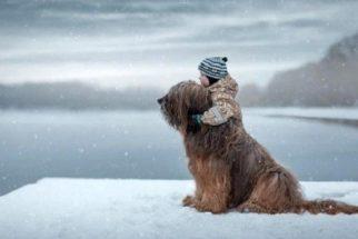 Fotógrafo russo cria ensaio com crianças e seus cães enormes