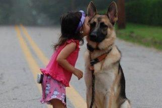 14 fotos que provam que o seu cãozinho é o seu melhor amigo