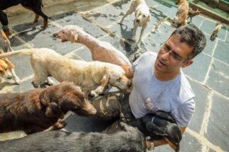Indiano cria santuário para cães que ninguém quer adotar