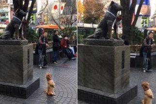 Cãozinho é flagrado posando para foto ao lado de estátua e 'viraliza'