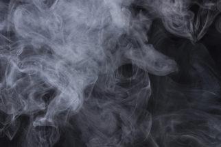 Inalação de fumaça pelos animais. O que fazer nesses casos?