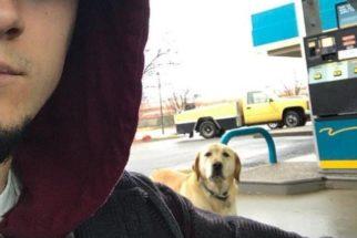 Homem tenta ajudar cachorro 'perdido' e tem uma grande surpresa