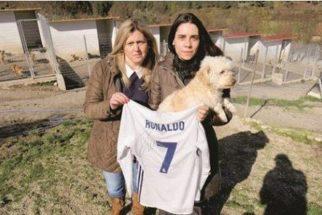Você não vai acreditar no que Cristiano Ronaldo fez para ajudar cães