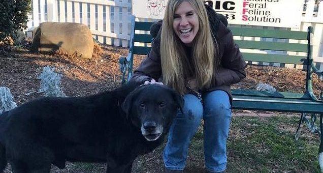 Final feliz! Cão que passou 15 anos acorrentado foi adotado