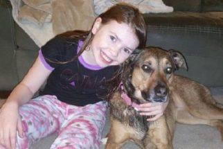 Garotinha abre mão de presentes de aniversário para ajudar cães sem lar