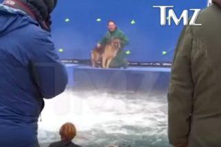 Filme Quatro Vidas de um Cachorro: vídeo vazado foi manipulado, diz investigação