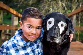 Cão com vitiligo ajuda garotinho com mesma condição a se aceitar