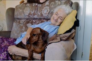 Emocionante: cadela ajuda a alegrar vida de senhora com Alzheimer