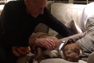 Ator de franquia de filmes X-Men e sua pit bull são puro amor nas redes sociais