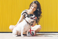 Como economizar na criação do seu animal de estimação sem comprometer o bem-estar dele