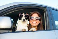 Conheça as malas indicadas para arrasar na viagem com o seu cão