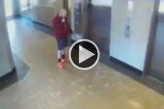 Homem salva cãozinho de terrível acidente com elevador