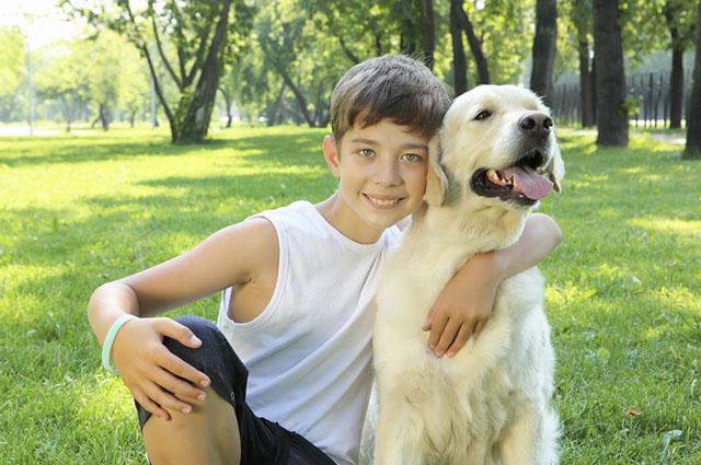 Os animais de estimação podem funcionar como apoio psicológico para crianças