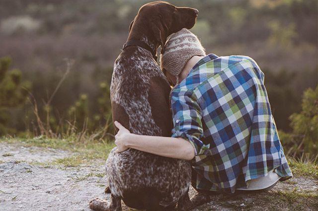 Animais de estimação ajudam a lidar com depressão, ansiedade e estresse