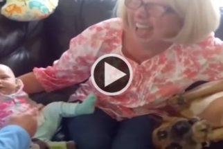 """Para rir: cãozinho se recusa a abrir mão de título de """"bebê da casa"""""""