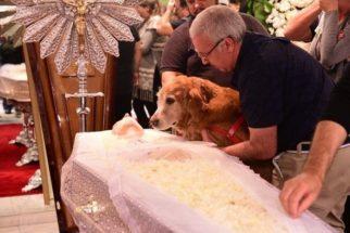 Cosmo, cachorro de Kid Vinil, se despede de tutor em seu velório