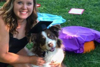 Faculdade cria cerimônia de graduação para os pets dos formandos