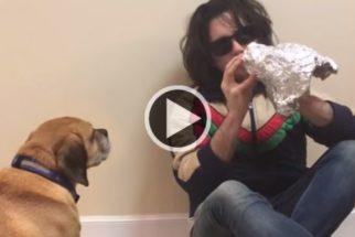 Incrível: artista 'esculpe' rosto de seu cãozinho em menos de 1 minuto