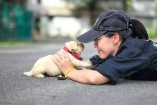 Polícia de Taiwan recruta os cadetes mais fofos que você já viu