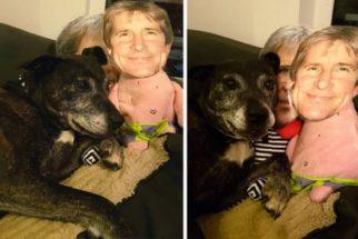 Cadela ganha brinquedos com o rosto de tutor para amenizar saudade