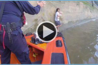 Solidariedade: Homem pula em rio para salvar cachorro de outra pessoa