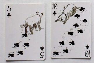 Artista cria incrível baralho temático de cachorros