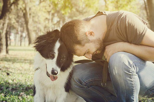 Cães podem ajudar tutor no tratamento contra a depressão