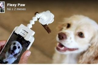 Empresa lança gadget que ajuda a fotografar animais de estimação