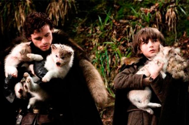 Nomes de cães inspirados nos personagens da série Game Of Thrones