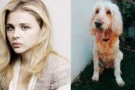 Atriz Chloe Grace Moretz usa Instagram para se despedir de seu cachorro