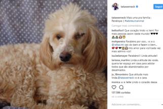 Após adotar cão deficiente, Tatá Werneck não se contenta e acolhe cadelinha
