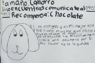 Sem ter fotos de seu cão perdido, garotinha decide desenhar um cartaz