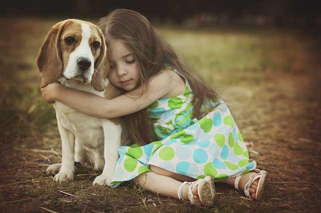 Explique, de acordo com a compreensão da criança, sobre a morte do cachorro