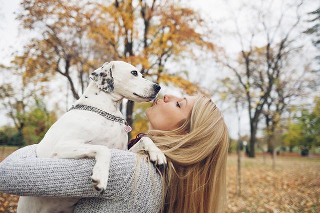 Existem belas mensagens que retratam o amor do dono pelo cão
