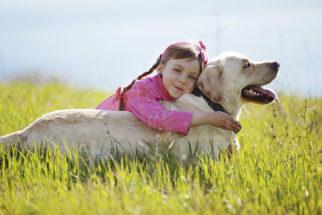 35 frases para fotos de cães junto com crianças