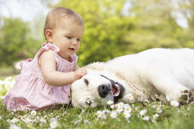 35 Frases Para Fotos De Cães Junto Com Crianças Clube Para Cachorros
