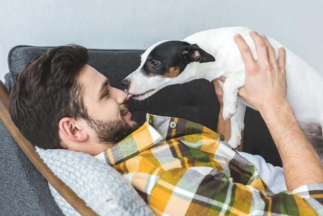 30 Frases Para Fotos De Cachorros Junto Com Homens Clube Para