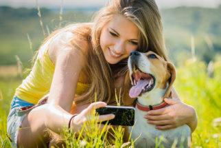 30 frases para fotos de cães junto com mulheres
